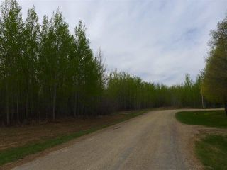 Photo 23: 50 Ave RR 281: Rural Wetaskiwin County Rural Land/Vacant Lot for sale : MLS®# E4191216