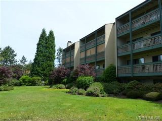 Photo 15: 108 3277 Quadra St in VICTORIA: SE Maplewood Condo for sale (Saanich East)  : MLS®# 733759