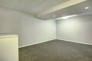 Photo 22: 66 Elk Hill SE: Airdrie Detached for sale : MLS®# A1049036