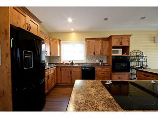 """Photo 9: 41464 YARROW CENTRAL Road: Yarrow House for sale in """"YARROW"""" : MLS®# H1400149"""