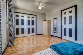 Photo 13: 143 Castleglen Way NE in Calgary: Castleridge Detached for sale : MLS®# A1100351