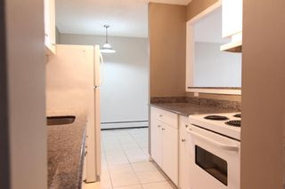 Photo 8: 201 3518 44 Street SW in Calgary: Glenbrook Apartment for sale : MLS®# A1119375