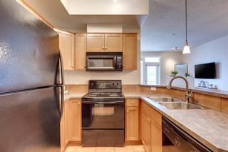 Photo 8: 215 208 Holy Cross SW in Calgary: Mission Apartment for sale : MLS®# A1123191