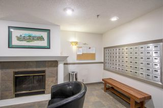 Photo 23: 405 525 56 Avenue SW in Calgary: Windsor Park Apartment for sale : MLS®# A1143592