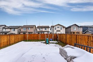 Photo 33: 172 Paint Horse Drive: Cochrane Detached for sale : MLS®# C4243058