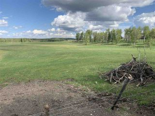 Photo 3: 53000 Range Road 73: Rural Parkland County Rural Land/Vacant Lot for sale : MLS®# E4202767