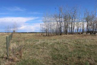 Photo 14: 57032 RR 50: Rural Lac Ste. Anne County Rural Land/Vacant Lot for sale : MLS®# E4244016