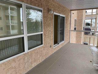 Photo 23: 203 17511 98A Avenue in Edmonton: Zone 20 Condo for sale : MLS®# E4224086