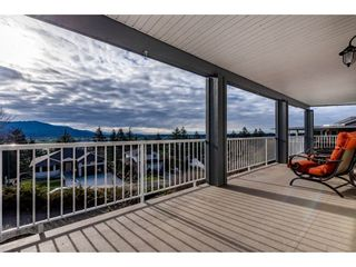 Photo 32: 35743 TIMBERLANE Drive in Abbotsford: Abbotsford East House for sale : MLS®# R2530088