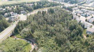 Photo 10: 40 BLACKBURN Drive W in Edmonton: Zone 55 House for sale : MLS®# E4255224
