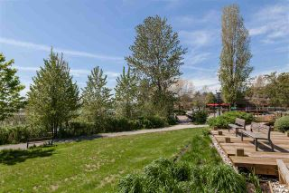 Photo 13: 101 3138 RIVERWALK Avenue in Vancouver: Champlain Heights Condo for sale (Vancouver East)  : MLS®# R2164116