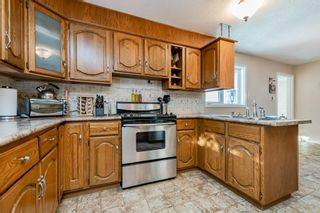 Photo 28: 57228 RGE RD 251: Rural Sturgeon County House for sale : MLS®# E4225650