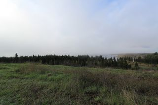 Photo 4: 1/4 2700 Block Squilax Anglemont Road in Lee Creek: North Shuswap Land Only for sale (Shuswap)  : MLS®# 10138544