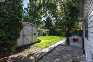 Photo 18: 4019 Malton Ave in VICTORIA: SE Mt Doug House for sale (Saanich East)  : MLS®# 770733