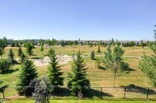 Photo 29: 321 278 SUDER GREENS Drive in Edmonton: Zone 58 Condo for sale : MLS®# E4258888