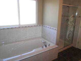 Photo 10: 23709 110B Avenue in Maple Ridge: Cottonwood MR House for sale : MLS®# R2114706