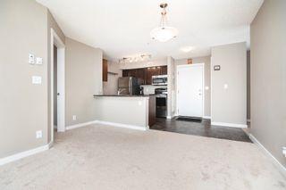 Photo 21: 306 5810 MULLEN Place in Edmonton: Zone 14 Condo for sale : MLS®# E4265382