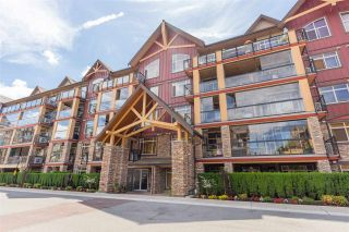 """Photo 2: 134 8288 207A Street in Langley: Willoughby Heights Condo for sale in """"WALNUT RIDGE 2-YORKSON CREEK"""" : MLS®# R2285005"""
