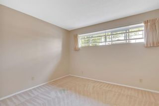 Photo 24: 20 Berkshire Close NW in Calgary: Beddington Heights Detached for sale : MLS®# A1133317