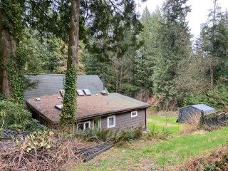 Photo 25: 11390 WILSON Street in Mission: Stave Falls House for sale : MLS®# R2564859