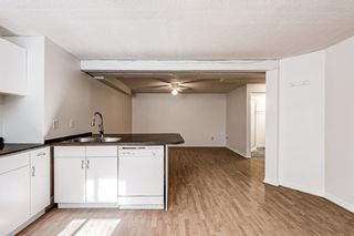 Photo 30: 183 Shawmeadows Road SW in Calgary: Shawnessy Detached for sale : MLS®# A1127759