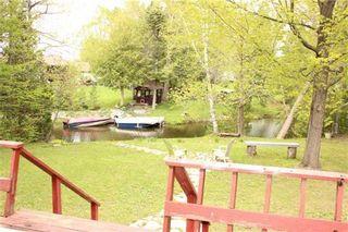 Photo 7: 11 Duncan Drive in Kawartha Lakes: Rural Eldon House (Bungalow-Raised) for sale : MLS®# X3201322