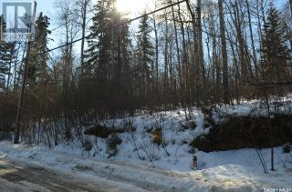 Photo 5: 156 Carwin Park DR in Emma Lake: Vacant Land for sale : MLS®# SK846952