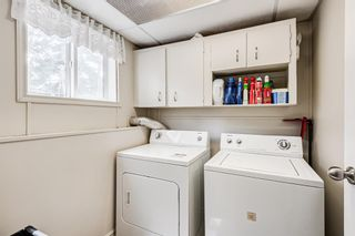 Photo 22: 20 Pineland Bay NE in Calgary: Pineridge Detached for sale : MLS®# A1108452