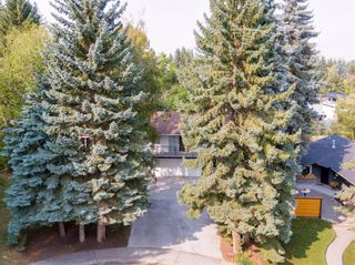 Photo 50: 62 Massey Place SW in Calgary: Mayfair Detached for sale : MLS®# A1132733
