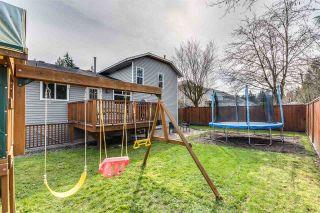 Photo 37: 4031 WEDGEWOOD Street in Port Coquitlam: Oxford Heights House for sale : MLS®# R2556568