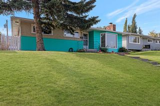 Photo 33: 17 FENTON Road SE in Calgary: Fairview Detached for sale : MLS®# A1034923