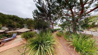 Photo 27: POINT LOMA House for sale : 4 bedrooms : 3284 Talbot St in San Diego