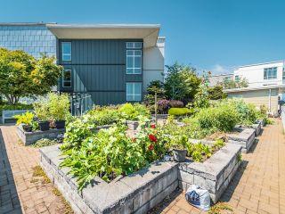 """Photo 34: 13 15850 26 Avenue in Surrey: Grandview Surrey Condo for sale in """"SUMMIT HOUSE - MORGAN CROSSING"""" (South Surrey White Rock)  : MLS®# R2602091"""