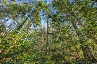 Photo 22: 1966 Gillespie Rd in : Sk 17 Mile House for sale (Sooke)  : MLS®# 878837