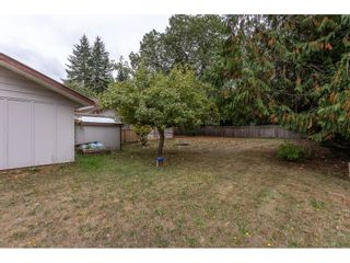 Photo 34: 3763 244 Street in Langley: Otter District House for sale : MLS®# R2616217