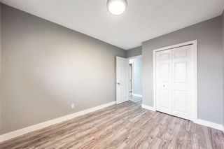 Photo 20: 820 Avonlea Place SE in Calgary: Acadia Detached for sale : MLS®# A1153045