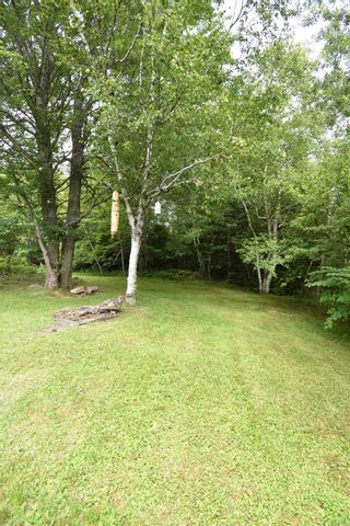 Photo 6: 143 MARSHALLTOWN Road in Marshalltown: 401-Digby County Residential for sale (Annapolis Valley)  : MLS®# 202118755