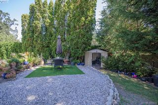 Photo 47: 4035 Saanich Rd in VICTORIA: SE High Quadra House for sale (Saanich East)  : MLS®# 793152