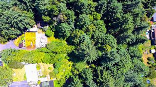 Photo 41: 3379 Opal Rd in : Na Uplands House for sale (Nanaimo)  : MLS®# 878294