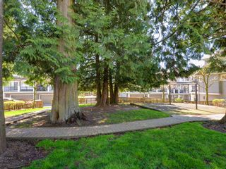 "Photo 20: 102 20449 66 Avenue in Langley: Willoughby Heights Townhouse for sale in ""Natures Landing"" : MLS®# R2260728"