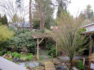Photo 15: 12081 GREENWELL Street in Maple Ridge: East Central House for sale : MLS®# R2049109