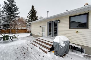 Photo 37: 303 Silver Valley Rise NW in Calgary: Silver Springs Detached for sale : MLS®# A1084837