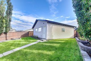Photo 27: 83 Cranberry Square SE in Calgary: Cranston Detached for sale : MLS®# A1141216