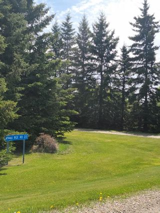 Photo 41: 49461 RGE RD 22: Rural Leduc County House for sale : MLS®# E4247442
