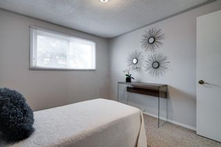 Photo 18: 43 Doverdale Mews SE in Calgary: Dover Row/Townhouse for sale : MLS®# A1052608