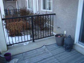 Photo 41: 134 99 WESTERRA Manor: Stony Plain Condo for sale : MLS®# E4224884