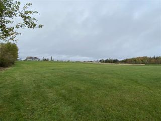 Photo 7: Lot 14 Salty Reef Road in Braeshore: 108-Rural Pictou County Vacant Land for sale (Northern Region)  : MLS®# 202021992