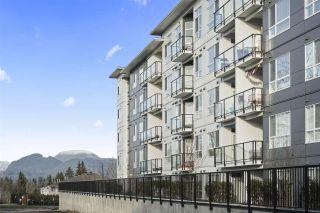 "Photo 18: 405 22315 122 Avenue in Maple Ridge: West Central Condo for sale in ""The Emerson"" : MLS®# R2586573"