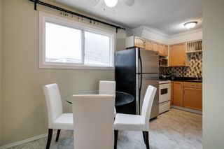 Photo 7: 43 Doverdale Mews SE in Calgary: Dover Row/Townhouse for sale : MLS®# A1052608