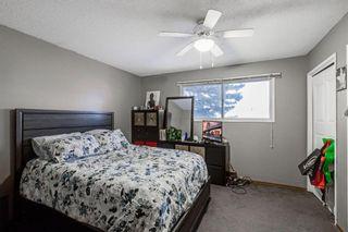 Photo 14: 255 Maitland Crescent NE in Calgary: Marlborough Park Detached for sale : MLS®# A1061446